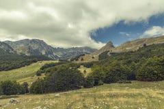 montenegro Sosta nazionale di Durmitor Immagini Stock Libere da Diritti