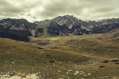 montenegro Sosta nazionale di Durmitor Immagine Stock Libera da Diritti