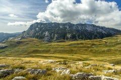 montenegro Sosta nazionale di Durmitor Immagine Stock