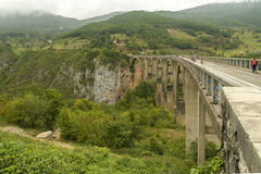 montenegro Sosta nazionale di Durmitor Tara River Canyon Fotografie Stock Libere da Diritti