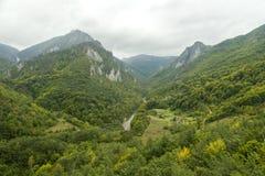 montenegro Sosta nazionale di Durmitor Tara River Canyon Fotografia Stock