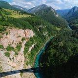 Montenegro Tara kanjon Royaltyfri Bild
