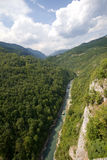Montenegro. Tara river canyon Royalty Free Stock Photography