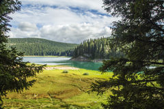 montenegro Zwart meer Het Nationale Park van Durmitor Stock Fotografie