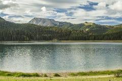 montenegro Zwart meer Het Nationale Park van Durmitor Royalty-vrije Stock Foto