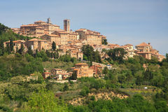 Free Montepulciano Stock Photography - 25953452