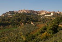 Montepulciano e vigne, Italia fotografia stock