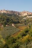 Montepulciano e vigne (ritratto), Italia fotografie stock libere da diritti