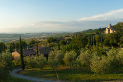 Montepulciano, Tuscany Stock Image