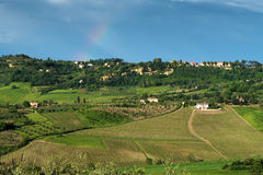 MONTEPULCIANO, TUSCANY/ITALY - 19 MAGGIO: Campagna vicino a Montepu Fotografie Stock Libere da Diritti