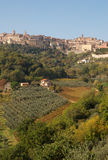 Montepulciano and Vineyards (Portrait), Italy Royalty Free Stock Photos
