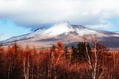 Montera Komagatake av Hakodateyama Hokkaido i vinter med torrt för Arkivfoto