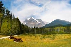 Montera Robson Park, kanadensiska steniga berg, Kanada Arkivfoton