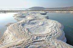 Montera Sdom och modeller av salt på det döda havet i Ein Bokek royaltyfri foto