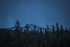 Montera Shasta på natten med skogen i förgrund Arkivfoto