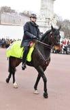 monterad polis Royaltyfri Fotografi