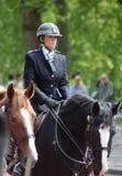 monterad polis Royaltyfri Bild