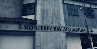 Monterey akvarium arkivbild