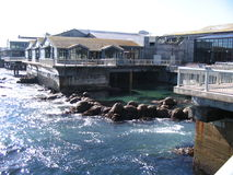 Monterey Aquarium. A view of Monterey Aquarium Stock Photography