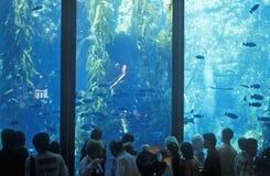 Monterey-Aquarium, Monterey, CA stockfoto