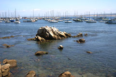 Monterey Bay Stock Photography