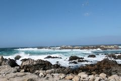 Monterey Bay. Waves crashing into rocks on Monterey Bay Royalty Free Stock Images