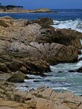 Monterey Bay's Rocky Shore Stock Photography