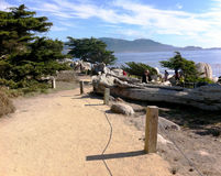 Monterey CA, Bay Park Royalty Free Stock Photos