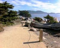 Monterey CA, zatoka park Zdjęcia Royalty Free