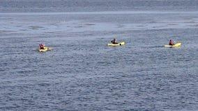 Monterey, California, Estados Unidos - 17 de octubre de 2015: Kajaks que se baten en el destino turístico popular del agua inmóvi almacen de metraje de vídeo