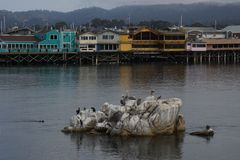 Monterey Fishermans Royaltyfri Fotografi