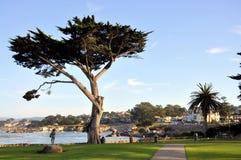 Monterey Kalifornien Stockbild