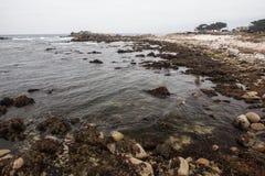 Monterey kust arkivfoton