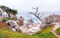 Monterey movimentação de 17 milhas em Califórnia foto de stock royalty free