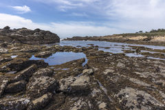 Monterey Peninsula Coastline - California Royalty Free Stock Photography