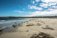 Monterey sand beach, California Stock Photo