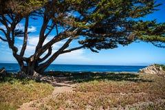 Monterey wybrzeże Zdjęcia Royalty Free