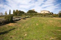 Monteriggioni Royalty Free Stock Images