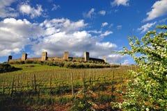Monteriggioni Royalty Free Stock Image