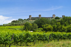 Monteriggioni. A little medieval city near the Siena, Toscana, Italy Royalty Free Stock Images
