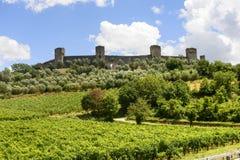 Monteriggioni (Tuscany) royaltyfri fotografi