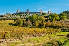 Monteriggioni Tuscany, Italien Royaltyfri Bild