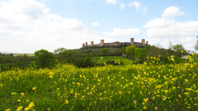 Monteriggioni wall with yellow flower and blue sky background royalty free stock photo