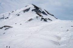 Montering alpina Tateyama - Japan Arkivbilder