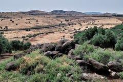 Montering av saligheterna Galilee royaltyfria foton