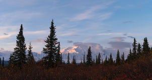 montering Denali Alaska arkivfoto