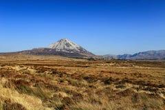 Montering Errigal, Co Donegal Irland royaltyfri fotografi