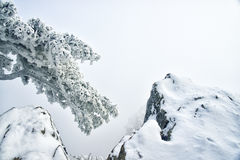 Montering Huangshan i vinter Royaltyfria Foton