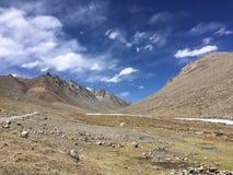 Montering Kailash Kora i vår i Tibet i Kina Royaltyfri Foto