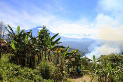 Montering Kinabalu, Sabah, Malaysia, Borneo Royaltyfria Foton